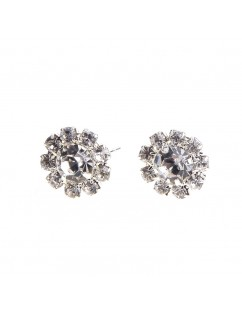 1 Pair New Fashion Women Silver Elegant Crystal Rhinestone Ear Stud Earrings