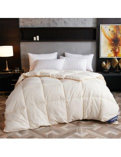 1 Piece Bedding Comforter Modern Solid Color Thick Comfy Quilt Core